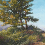 pastel painting of two pine trees in sunlight